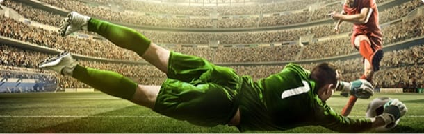 Soccer goal shot.