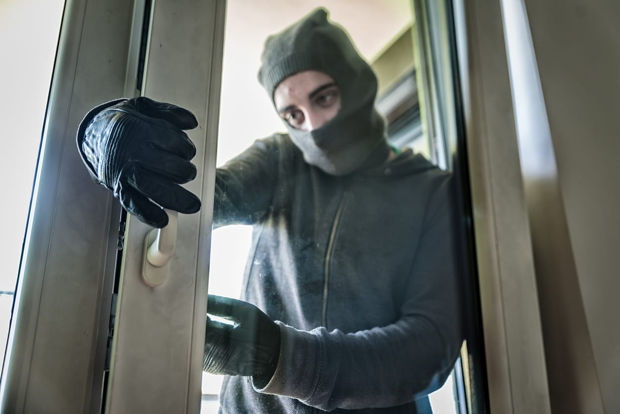 Crime and Security Systems