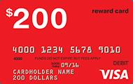 Visa 300