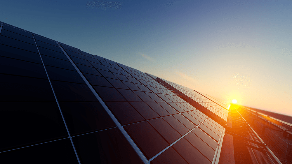 Vivint solar panels in sunlight