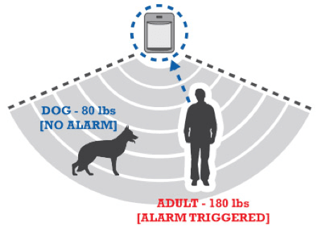 Graphic showing how motion sensor is triggered