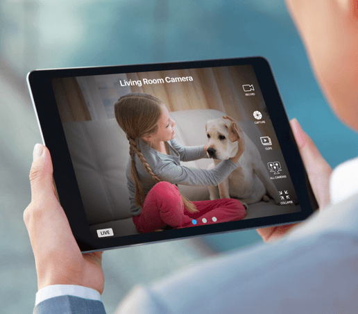 Parent using tablet to watch child and dog