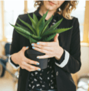 Woman holding a fake plant